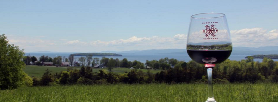 Snow Farm Vineyard on the Shore of Lake Champlain