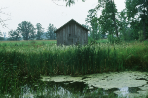 600-Rokeby-Museum-Granary-from-across-the-pond