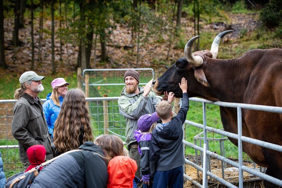 Retreat Farm, Brattleboro - Vermont Tourism Network