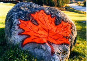 600-Goodrich-Maple-Farm-Rock
