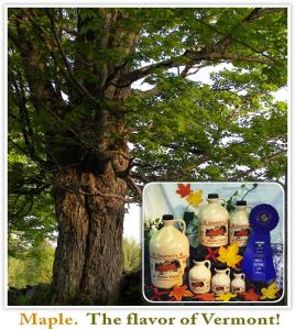 600-Goodrich-Maple-Farm