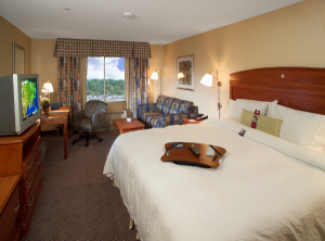 600-Hampton-Inn-Rutland-king-room