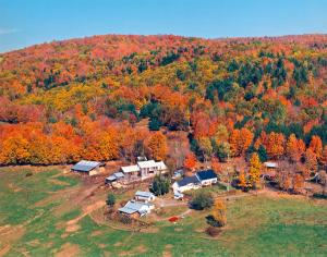 600-Sugarbush-Cheese-&-Maple-Farm-aerial-fall
