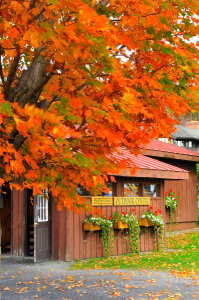 600-Trapp-Family-Lodge-Fall-outdoor-center