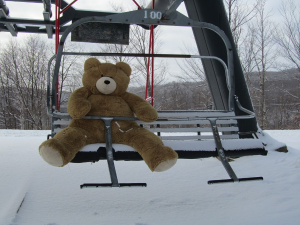 600-Vermont-Teddy-Bear-Company-lift