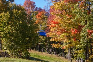 600Mount Snow Foliage