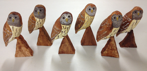 Birds of Vermont owls